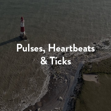 pulses, heartbeats, ticks